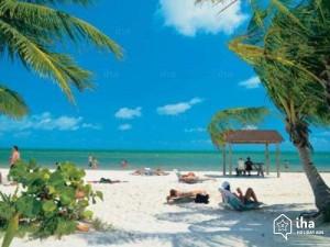 Noleggio-Auto-Florida-Miami-beach